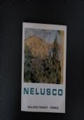 Nelusco- mostra antologica 1938-1970
