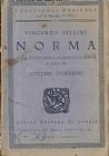 Norma: guida attraverso il dramma e la musica a cura di Adelmo Damerini (GUIDE – CRITICA – VINCENZO BELLINI)