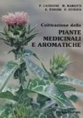 Coltivazione delle piante medicinali e aromatiche
