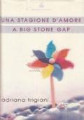 Una stagione d'amore a Big Stone Gap