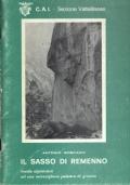Il Sasso di Remenno. Guida alpinistica ad una meravigliosa palestra di granito