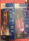 NUOVA MATEMATICA A COLORI: ALGEBRA+GEOMETRIA