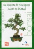 Alla scoperta del meraviglioso mondo dei bonsai