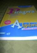 Pitagora. Algebra