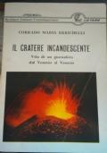 Il cratere incandescente Vita di un giornalista dal Vesuvio al Vesuvio