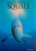 Balene & Delfini
