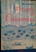 Il viaggio di Gelsomina