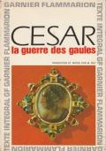 Cesar - La guerre des gaules