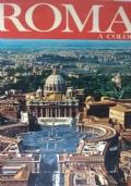 ROMA A COLORI album guida artistica Il Vaticano La Cappella Sistina