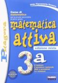 Matematica attiva 3a