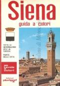 Siena e dintorni: nuova guida artistica