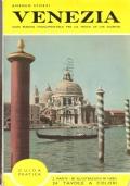 Una guida pratica di Venezia: con brevi annotazioni su le palafitte, il mosaico, gli stili architettonici