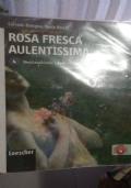 Rosa fresca aulentissima 4
