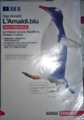 L'AMALDI BLU - LE MISURE, LA LUCE, L'EQUILIBRIO, IL MOTO, IL CALORE