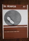 Piccola storia dell'abitazione in Europa-Enciclopedia monografica Loescher b/18