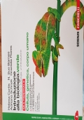 Introduzioni alla biologia.verde