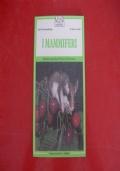 KARL SCHWAMMBERGER-I MAMMIFERI-FRANCO MUZZIO EDITORE-1985