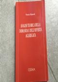 Analisi Teorica Della Domanda e Dell'Offerta Aggregata