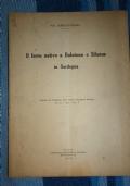 Il ferro nativo a bolotona e Silanus in Sardegna