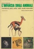 L'infanzia degli animali (invertebrati, pesci, anfibi, rettili, uccelli, mammiferi)