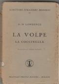 LA VOLPE-LA COCCINELLA