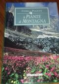 Le Piante Di Montagna