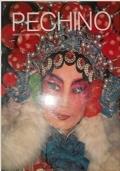 un qualche libro fotografico su una qualche parte della Cina
