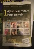 Destino DELE B1 : preparación al diploma de español como lengua extranjera : 4 modelos completos para el nuevo examen a partir de 2013