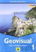 Geovisual 1