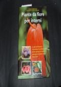 piante da fiore per interni