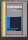 MATEMATICA GUIDATA per il biennio delle scuole superiori- algebra 2
