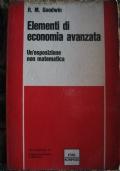Elementi di economia avanzata - Un'esposizione non matematica