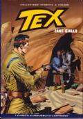Tex 19 - Caccia la fantasma - Collezione storica a colori