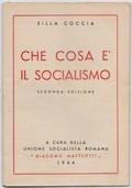 Che cosa è il socialismo