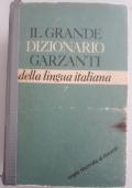 Il mio primo Rizzoli Larousse. Dizionario illustrato della lingua italiana per la scuola elementare 6-8 anni