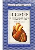 IL CUORE Le coronarie, l'infarto, l'ischemia, le cure