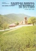 Sant'Alberto di Butrio. Una gemma d'Oltrepò. Storia-arte-fede