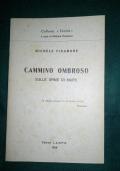 MICHELE FINAMORE CAMMINO OMBROSO SULLE ORME DI MARX
