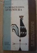 La meravigliosa avventura (Le stagioni)