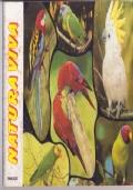 NATURA VIVA serie conoscere ediboy 1979 - album figurine vuoto