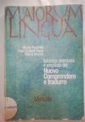 Maiorum lingua nuovo comprendere e tradurre
