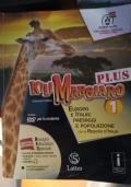KiliMangiaro Plus 1