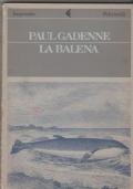 La balena con La coccinella e le false tenerezze