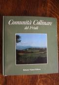 Comunità collinare del Friuli