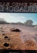Sulle Orme dei dinosauri