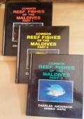 COMMON REEF FISHES OF THE MALDIVES - Nr. 3 Libri