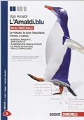 L�Amaldi Blu