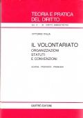 Il volontariato. Organizzazioni, statuti e convenzioni. Schemi - proposte - problemi