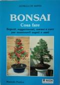 Bonsai - Cosa fare