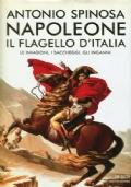 Napoleone. Il flagello d'Italia (Le invasioni, i saccheggi, gli inganni)
